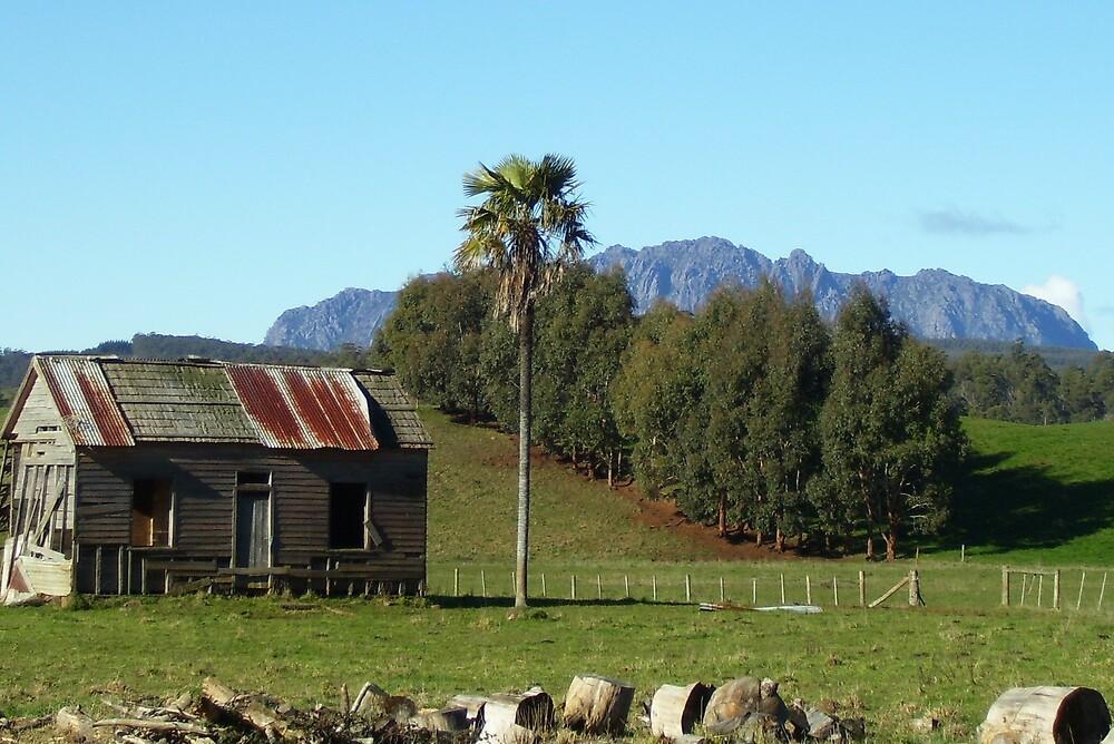 Mt Roland, Tasmania by gaylene
