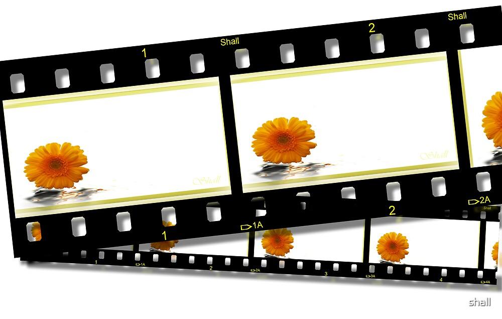 Film Fantastic! by shall