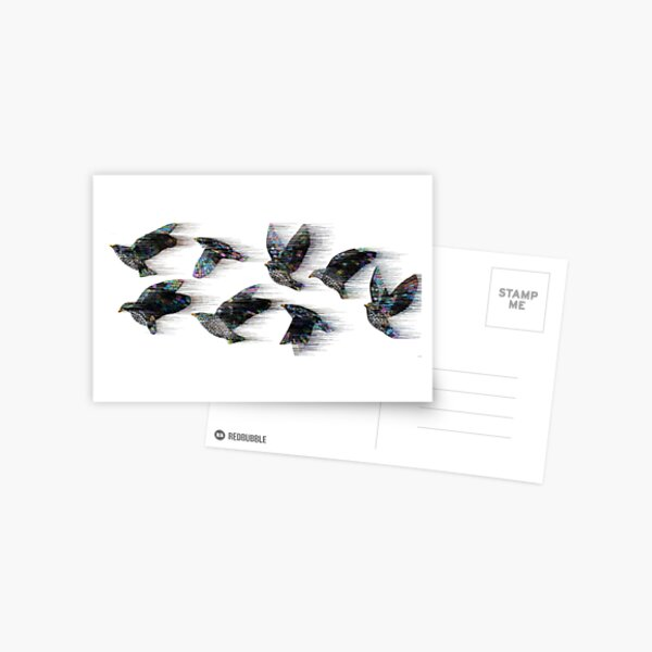 Starlings in the Wind Postcard