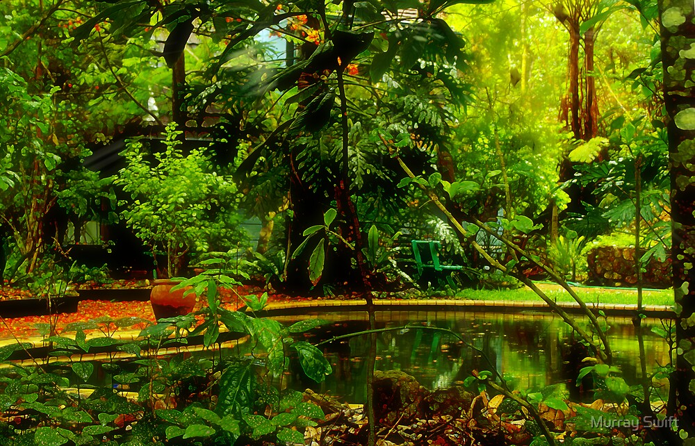 Tropical Oasis2 by Murray Swift