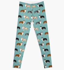 Australian Shepherd owners dog breed cute herding dogs aussie dogs animal pet portrait hearts by PetFriendly Leggings