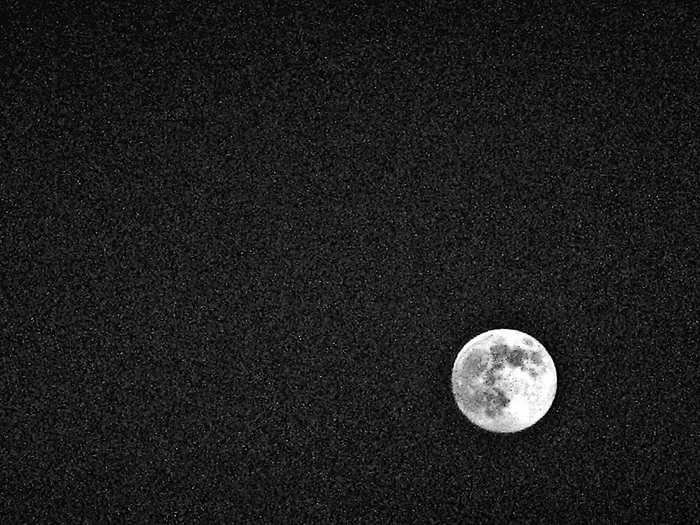 Moon by Tommy Seibold