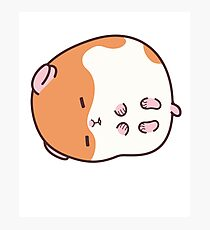 Hamster Emoji Cute Sleeping Hammie Photographic Print