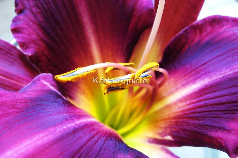Flower Power by Karla Aguirre
