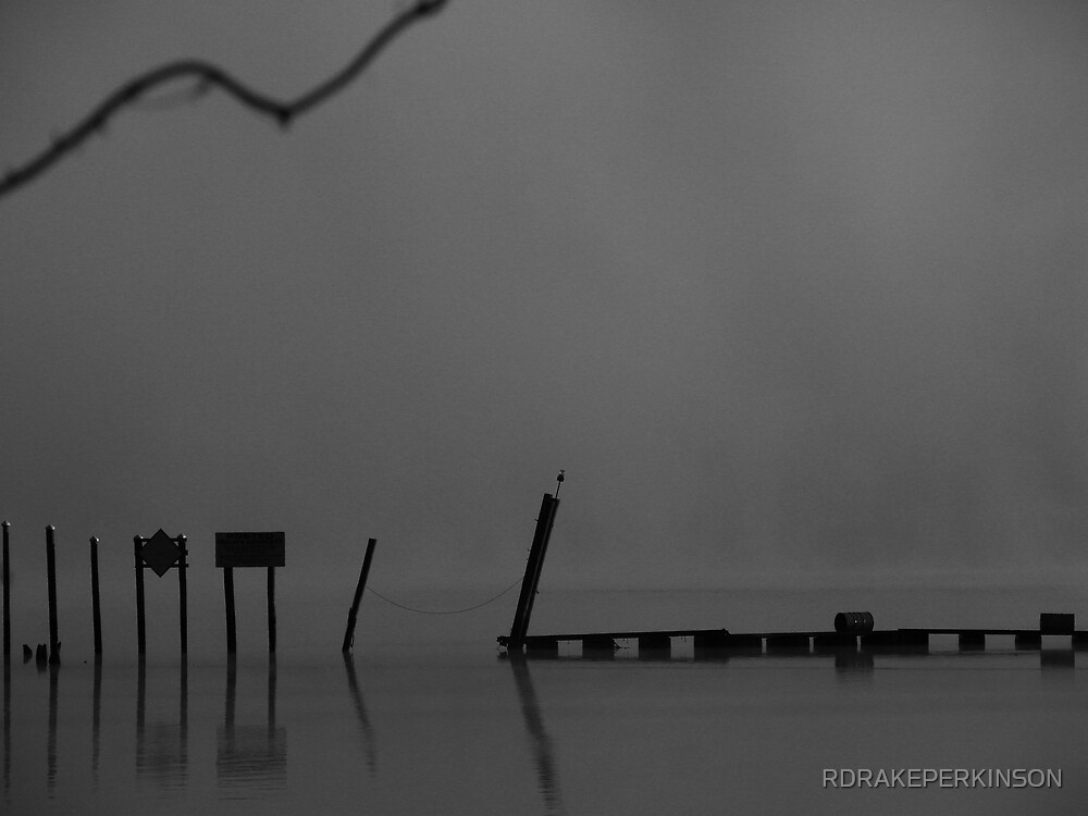 FOG IN BLACK AND WHITE by RDRAKEPERKINSON