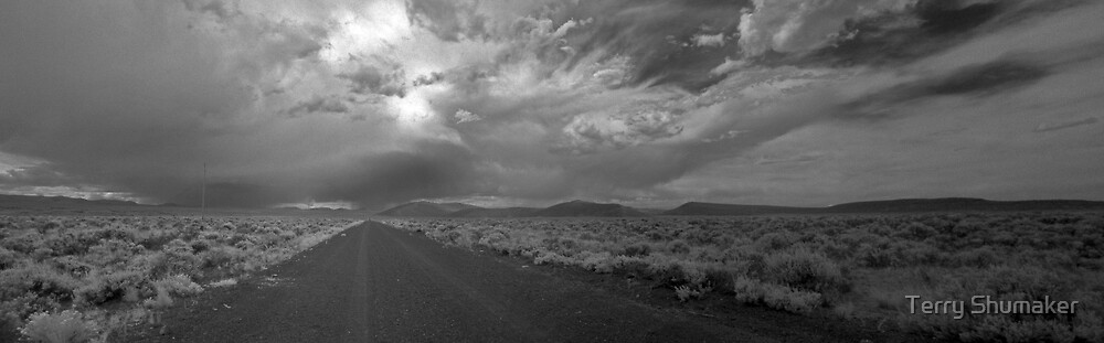High Desert Two by Terry Shumaker
