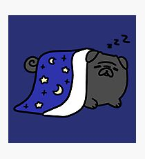 Sleepy Black Pug Photographic Print