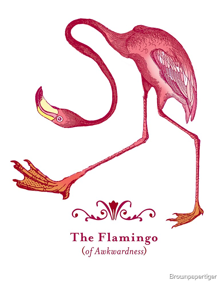 Flamingo of Awkwardness by Brownpapertiger
