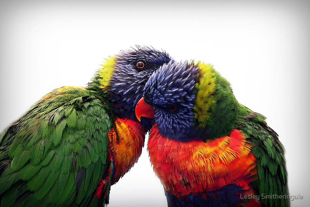 Whisper it to me! by Lesley Smitheringale