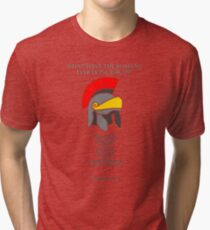 What have the Romans ever done for us? Tri-blend T-Shirt