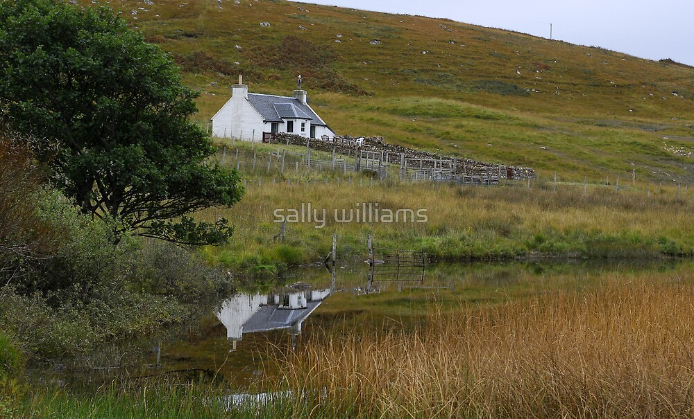 Away from the rat race by sally williams