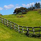 Santa Ynez Ranch by Eyal Nahmias