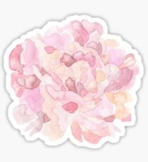 Pretty pink and peach carnation flower watercolour Sticker