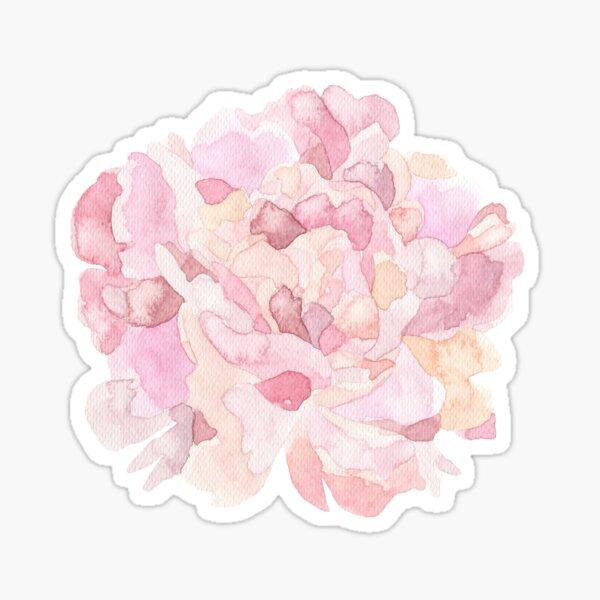Pretty pink and peach carnation flower watercolour Sticker