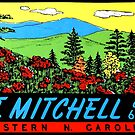 Mount Mitchell North Carolina Vintage Travel Decal by hilda74