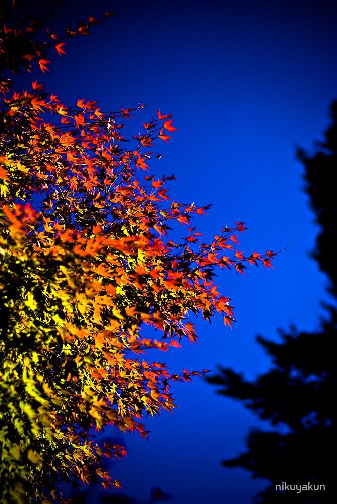 Autumnal saturation. by nikuyakun