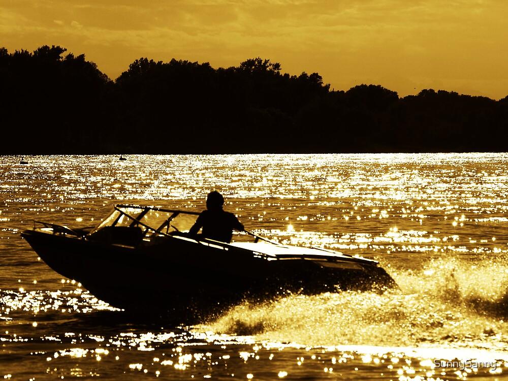 Danube, golden by SunnySanny