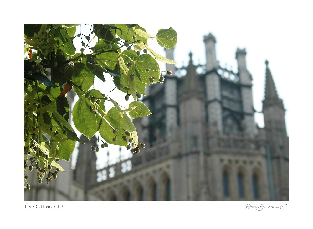 Ely Cathedral 3 by Dan Donovan