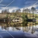 Healey Dell Pool by Avril Harris