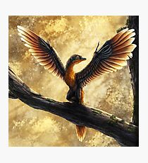 Archaeopteryx Lithographica Commission Photographic Print