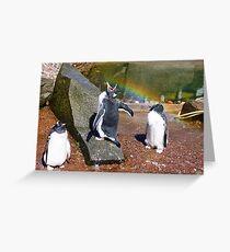Gentoo Penguin eating Rainbow Greeting Card