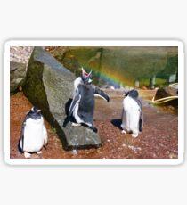Gentoo Penguin eating Rainbow Sticker