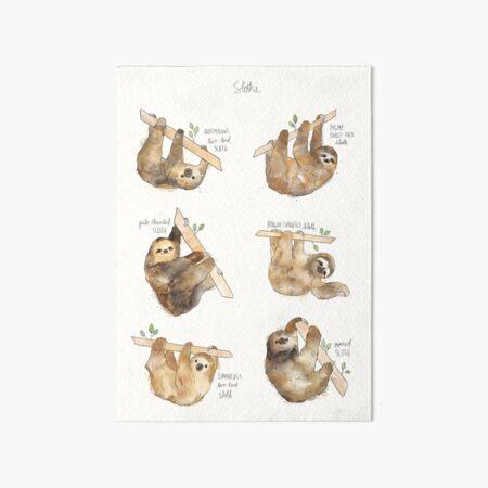 Sloths Art Board Print