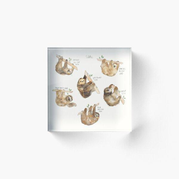 Sloths Acrylic Block