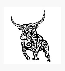 Tribal Bull Photographic Print