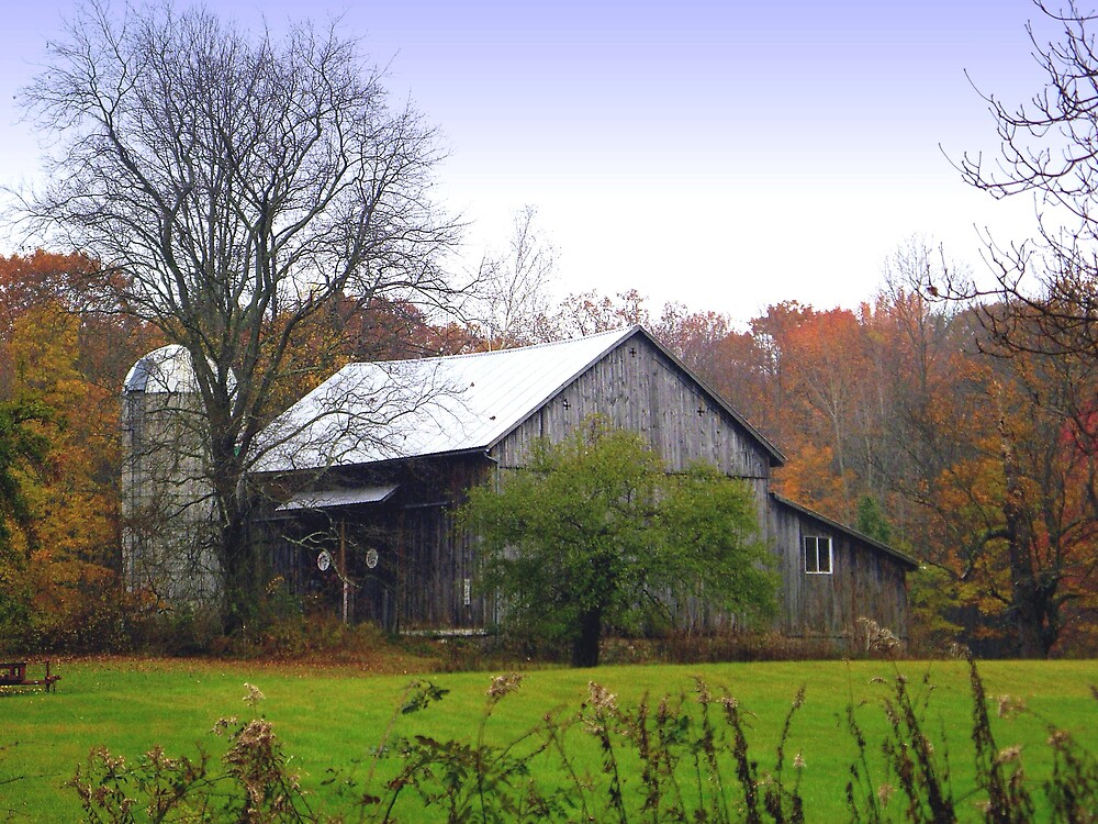 """""""Out In The Country"""" by Bridget Banik"""