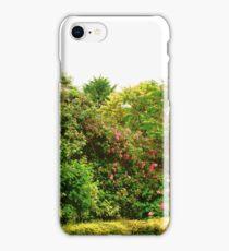 Cottage Garden, Donegal, Ireland iPhone Case/Skin