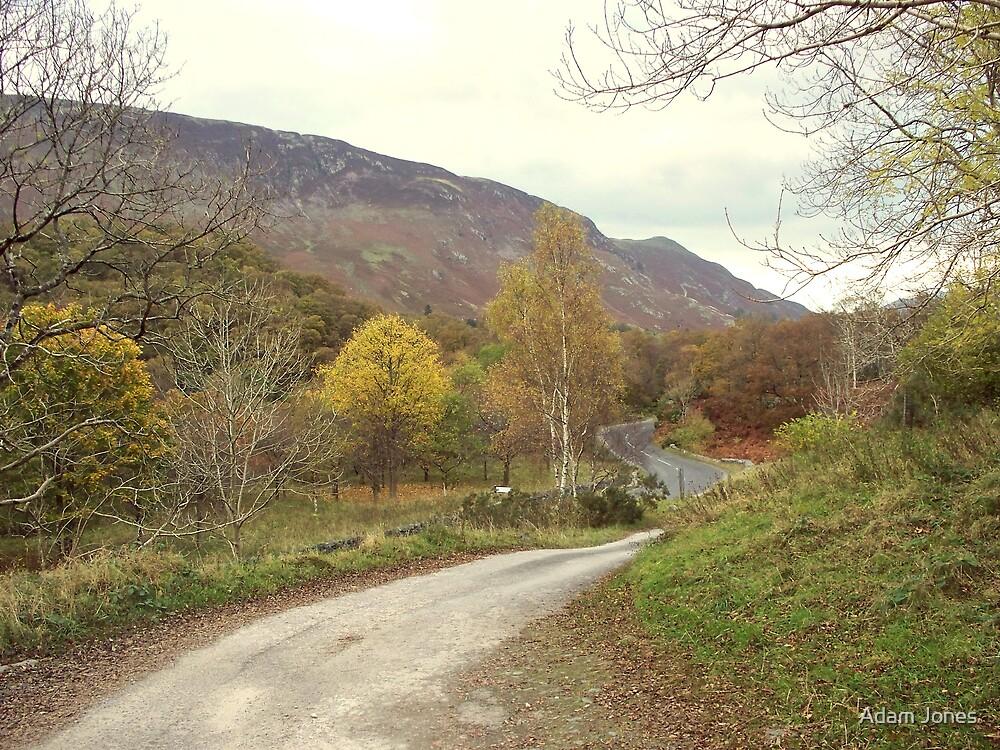 Borrowdale Roads by Adam Jones