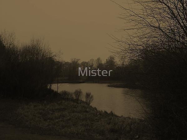Lake 2 by Mister