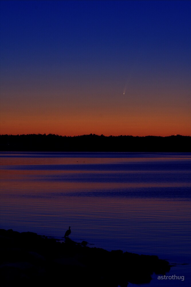 comet McNaught by astrothug