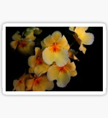Yellow Orchid Cluster  Sticker
