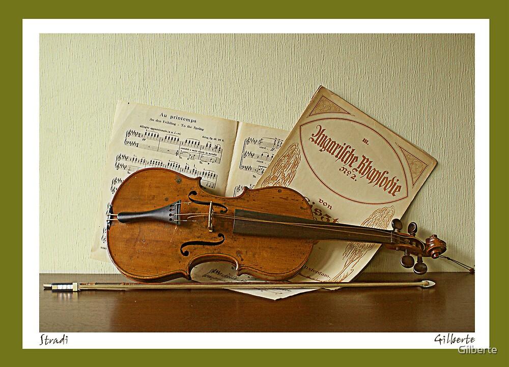 Stradi by Gilberte