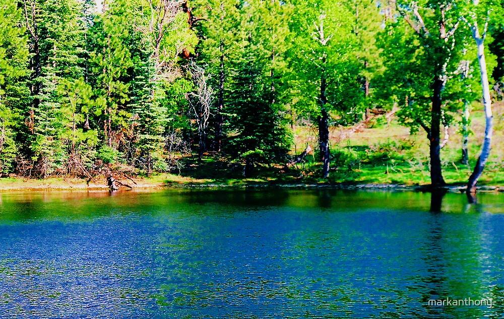 PANITED LAKE by markanthony