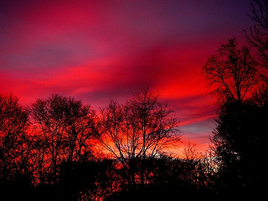 Stayed awake all night and watching the sun rise  by jammingene