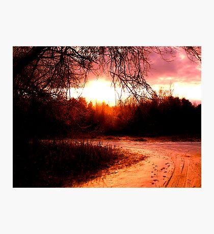 Sunlit Winter Road Photographic Print