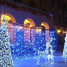 Christmas decorations by Elena Skvortsova