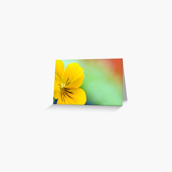 a bright yellow flower Greeting Card