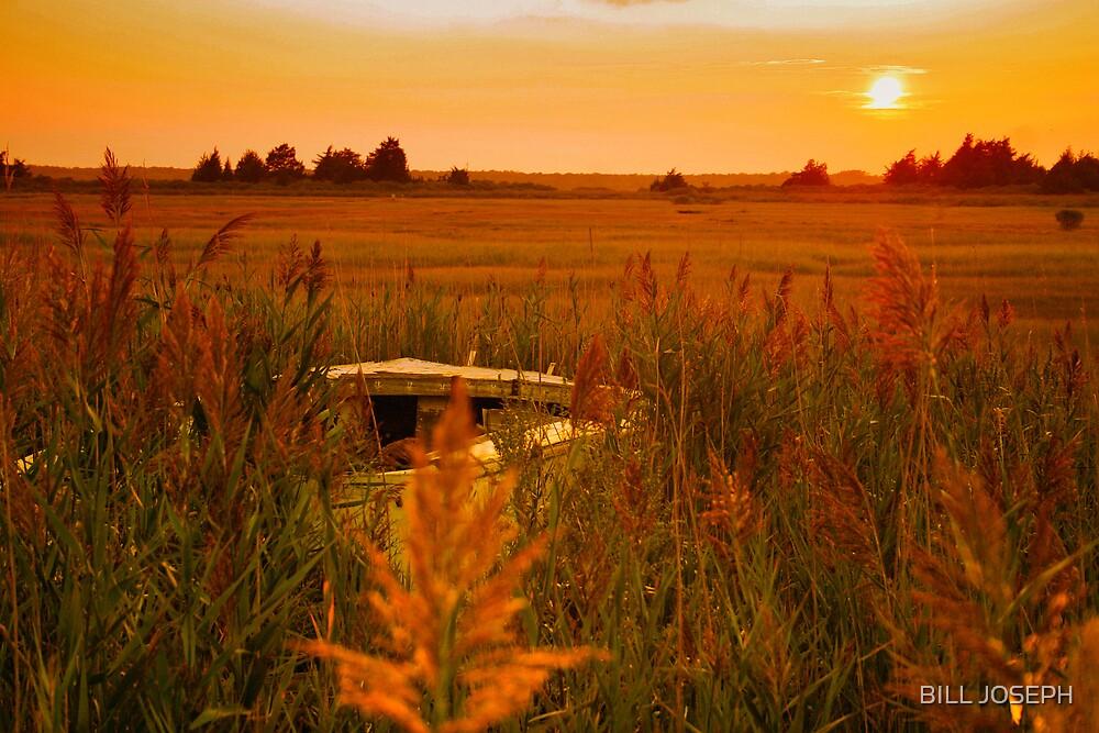 GOLDEN SUNSET by BILL JOSEPH