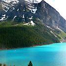 Lake by Robert Blamey