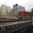 High Line, Twilight View, New York City's Elevated Park and Garden by lenspiro
