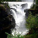 Waterfall by Robert Blamey