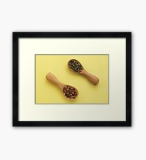 Two spoons of spices Framed Print