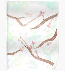 Simplistic Cherry Blossoms Poster