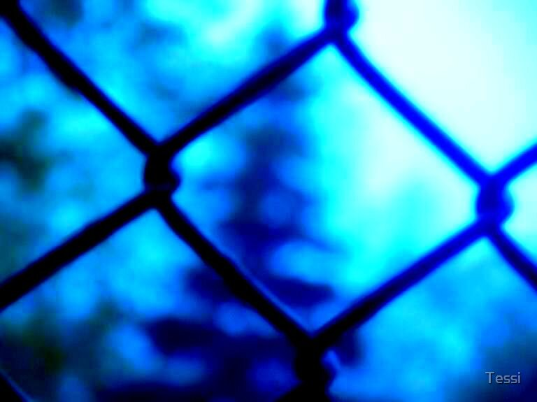 Fence by Tessi