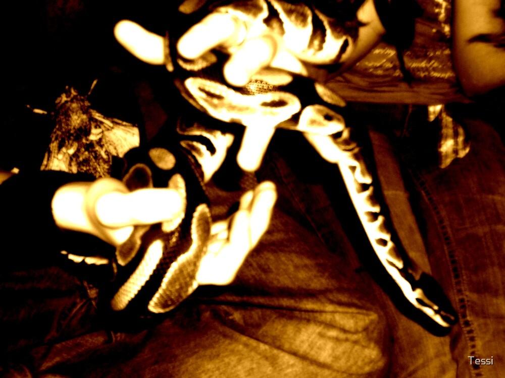 Snake by Tessi