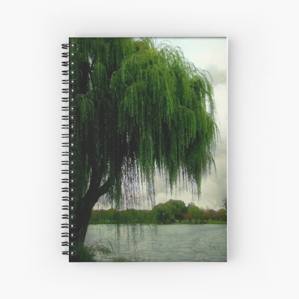 My beautiful weeping willow © Spiral Notebook